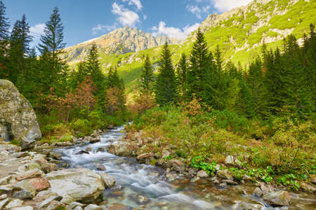 The Roztoka Stream in Roztoka Valley  Tatra National Park  The High Tatras, Carpathian Mountains  Nature reserve  photo