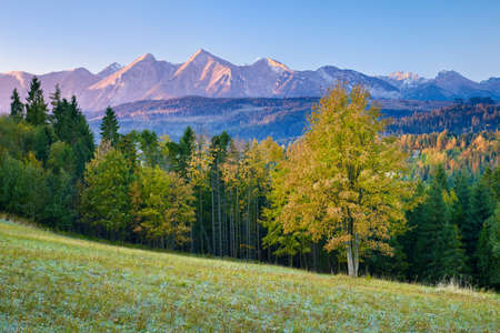 Beautiful dawn over The High Tatras, Carpathians  Morning landscape with trees and mountains