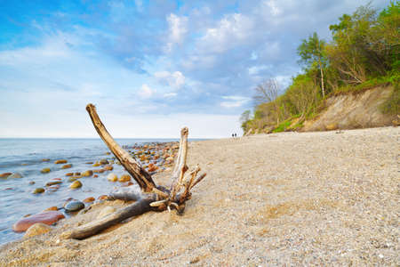 Seascape with coastal stones in the ocean and trunk on beach  The Baltic coast, mediterranean sea, Poland  Stok Fotoğraf