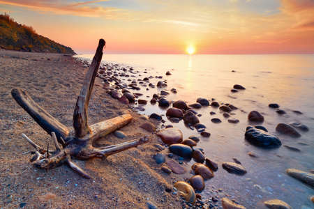 Tranquil colorful sunshine  Beautiful seascape with trunk on beach and coastal stones in the ocean  The Baltic coast, mediterranean sea, Poland