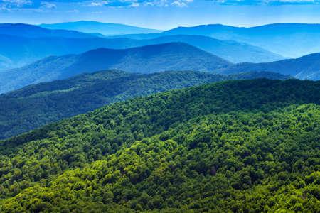 Mountains scenery background  Beautiful landscape  Forest in Bieszczady National Park  Carpathians, Poland  Banco de Imagens