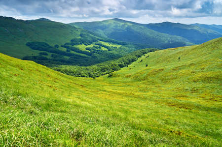 Mountains scenery background  Beautiful landscape  Panorama of grassland and forest in Bieszczady National Park  Carpathians  Podkarpackie Voivodeship, Poland Banco de Imagens - 29394668