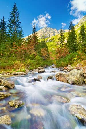 Roztoka Stream in Roztoka Valley. photo