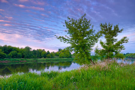 narew: Countryside spring landscape blue sky trees purple clouds Narew river Poland Stock Photo