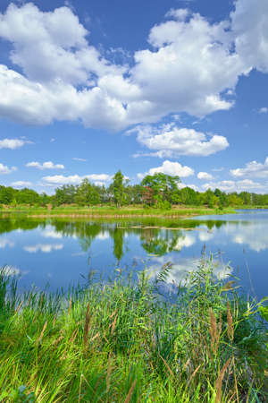 Spring summer landscape blue sky clouds river pond green trees countryside grass Poland