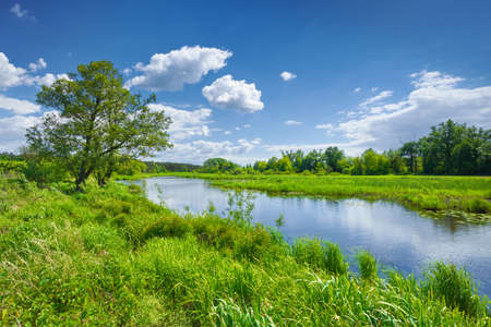 Spring summer river landscape blue sky clouds countryside Banco de Imagens