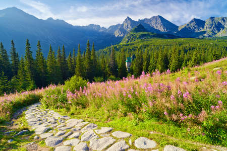 Beautiful nature landscape Gasienicowa Valley trail High Tatra Mountains. Carpathians, Poland Stock Photo