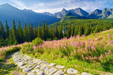 best shelter: Beautiful nature landscape Gasienicowa Valley trail High Tatra Mountains. Carpathians, Poland Stock Photo