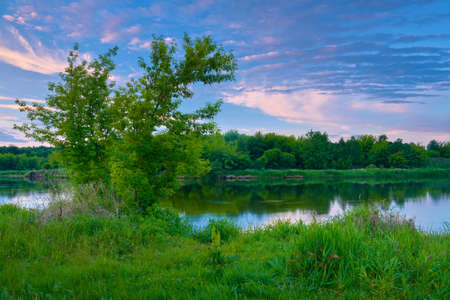 narew: Countryside spring landscape blue sky trees clouds Narew river Poland dawn