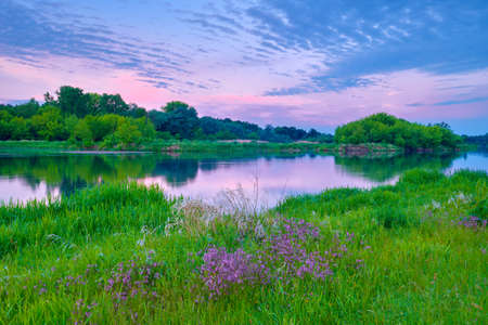 narew: Beautiful sunshine countryside river flowers sky clouds landscape meadow Poland Stock Photo