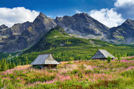 best shelter: Beautiful nature landscape Gasienica Valley High Tatra Mountains Carpathians Poland Stock Photo