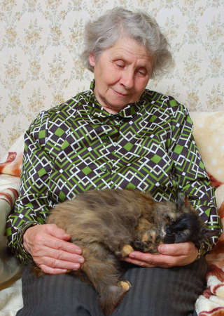 grandmother sitting with cat on her hands photo