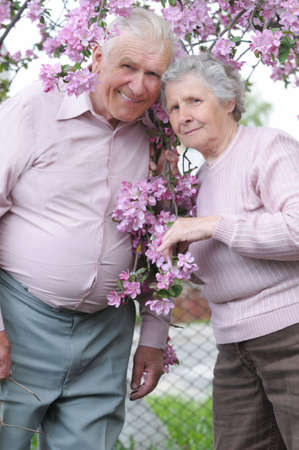 happy old couple on the flowering  apple-tree  background Stock Photo - 4279429