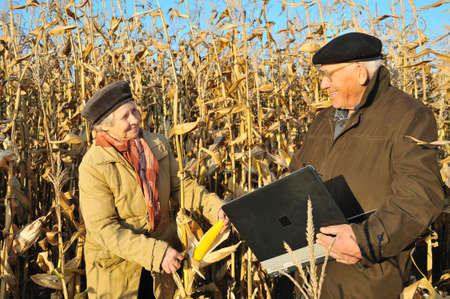happy farmers in maize field photo