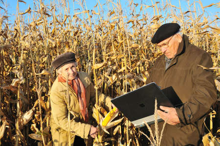 serious farmers in maize field photo