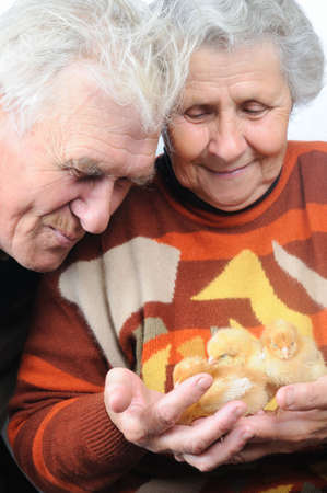 two old people with little chicken photo