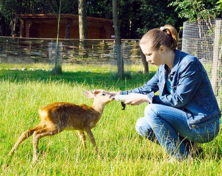 Beautiful girl feeds young deer