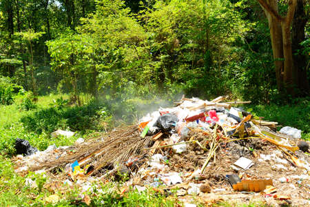 soil pollution: Burning garbage in the forest that make smoke pollution into nature and air Stock Photo
