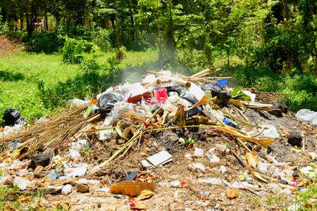 A queima de lixo na floresta que fazem polui