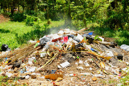 Burning garbage in the forest that make smoke pollution into nature and air Stock Photo