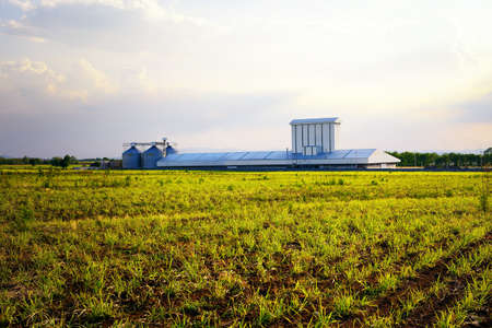 Agriculture factory with silo in the field photo