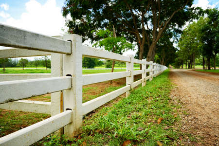 white picket fence: White concrete fence in farm field