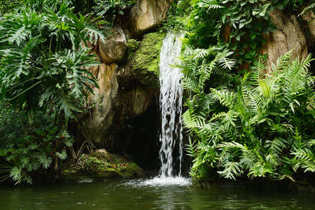 Artificial tropical garden waterfall