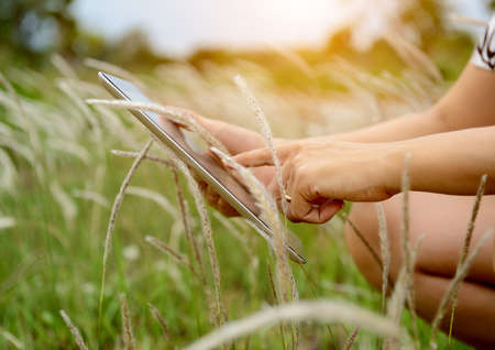 Hands using tablet computer in green field Stock Photo