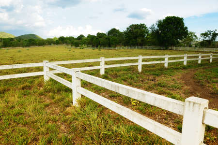 White concrete fence in horse farm field photo