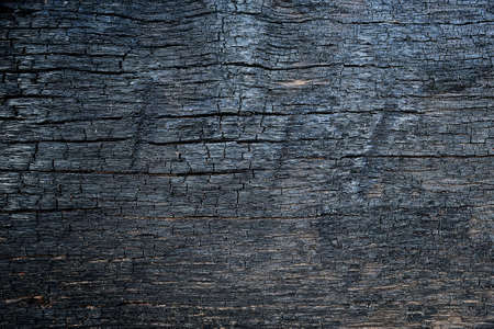 burnt wood: Burnt wood texture Stock Photo