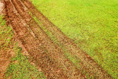 road marks: Truck tires footprint on the grass Stock Photo