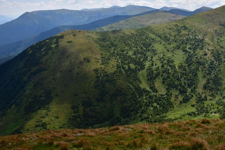The top of Carpathian Mountains