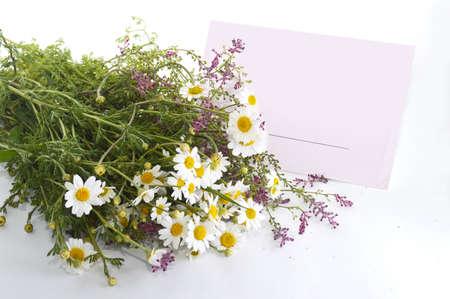 gratefulness: Letra y flores