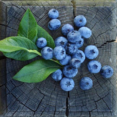 blueberries: blueberries Stock Photo
