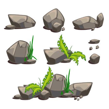 fern  large fern: Set of stones Illustration