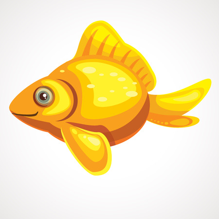 Gold aquarium cute fish cartoon. Vector illustration. Ilustração