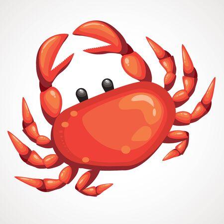 Cartoon red sea crab. Vector illustration