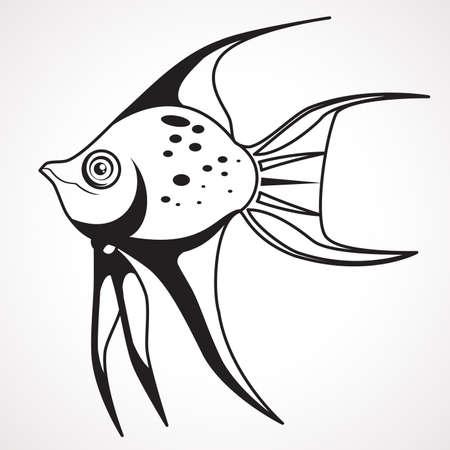 Picture - coloring sea fish. Vector illustration Çizim