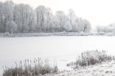 White winter landscape - snowy river and frosty trees on shore