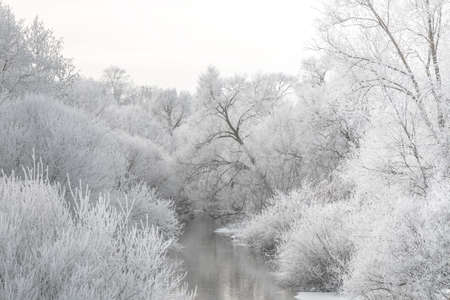 White winter landscape - frosty trees and river in cold morning. Tranquil winter nature. Stok Fotoğraf
