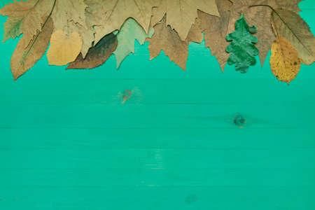 Mise à plat de fond vert en bois avec des feuilles sèches d'automne. Surface de planches de bois pour l'espace de copie. Notion d'automne. Banque d'images