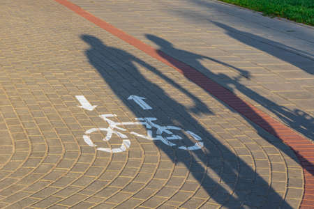 Long shadows of cyclists on bicycle lane in sunset. Ecological transport concept