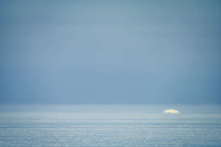 Minimalist winter landscape of Baltic sea with floating ice fragment on still sea water