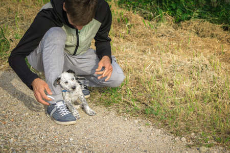 Cute puppy helping to tie man's jogging shoes. Male on rural track in countryside bending over tying his laces on his running shoes before workout and training. Healthy lifestyle concept.