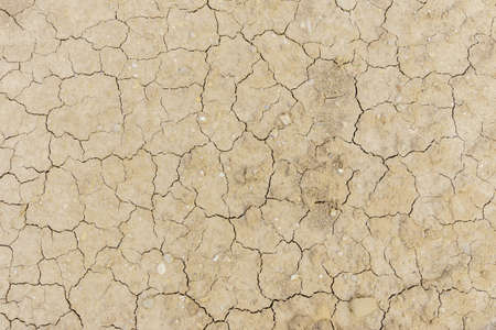 Cracked dirty earth. Soil ground with cracks texture from above. Global warming effect. Stock Photo