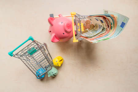 Big pig bank rolling shopping cart with euro notes and little pig banks holding empty trolley cart. Piglet banks with empty shopping cart and big pig bank with cart full of euro banknotes. Top view.