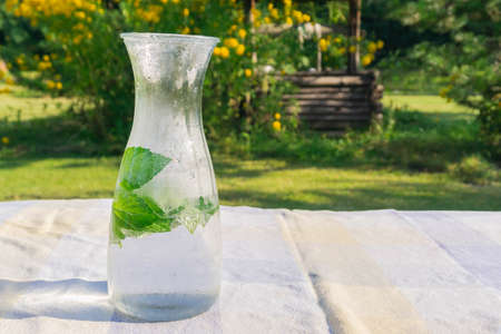 Chilled water with fresh mint in glass jug on table in countryside. Drinking water with mint leaves in transparent jugful outdoors. Pitcher with detox water on green foliage background hot sunny day