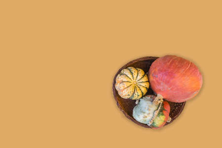 Colorful pumpkins in brown wicker bowl isolated on yellow background. Halloween vintage background. Mockup for Halloween. Top view, Flat lay