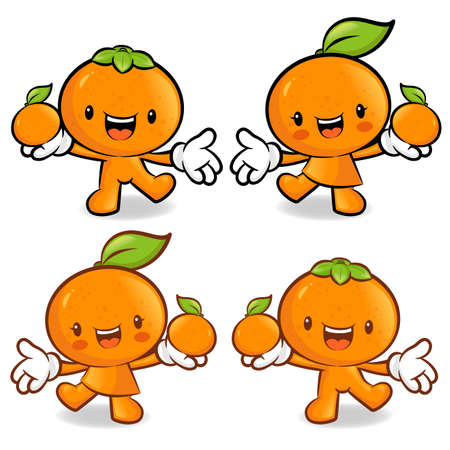 Tangerine and Orange Couple characters to promote fruit selling. Fruit Character Design Series. Vector
