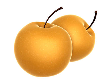 asian pear: Two Fresh Beige color Asian Pear. Foods and Dishes Series. Stock Photo